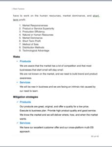 Apple App business plan