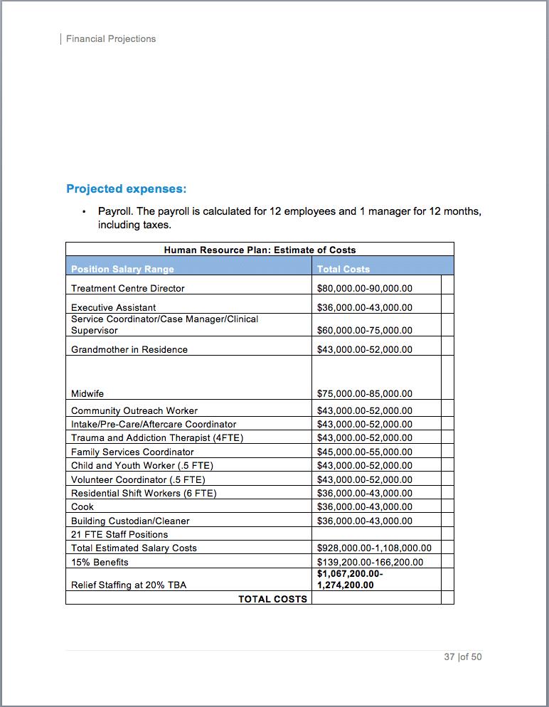 drug rehabilitation center business plan