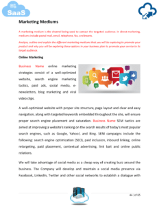 SaaS business plan