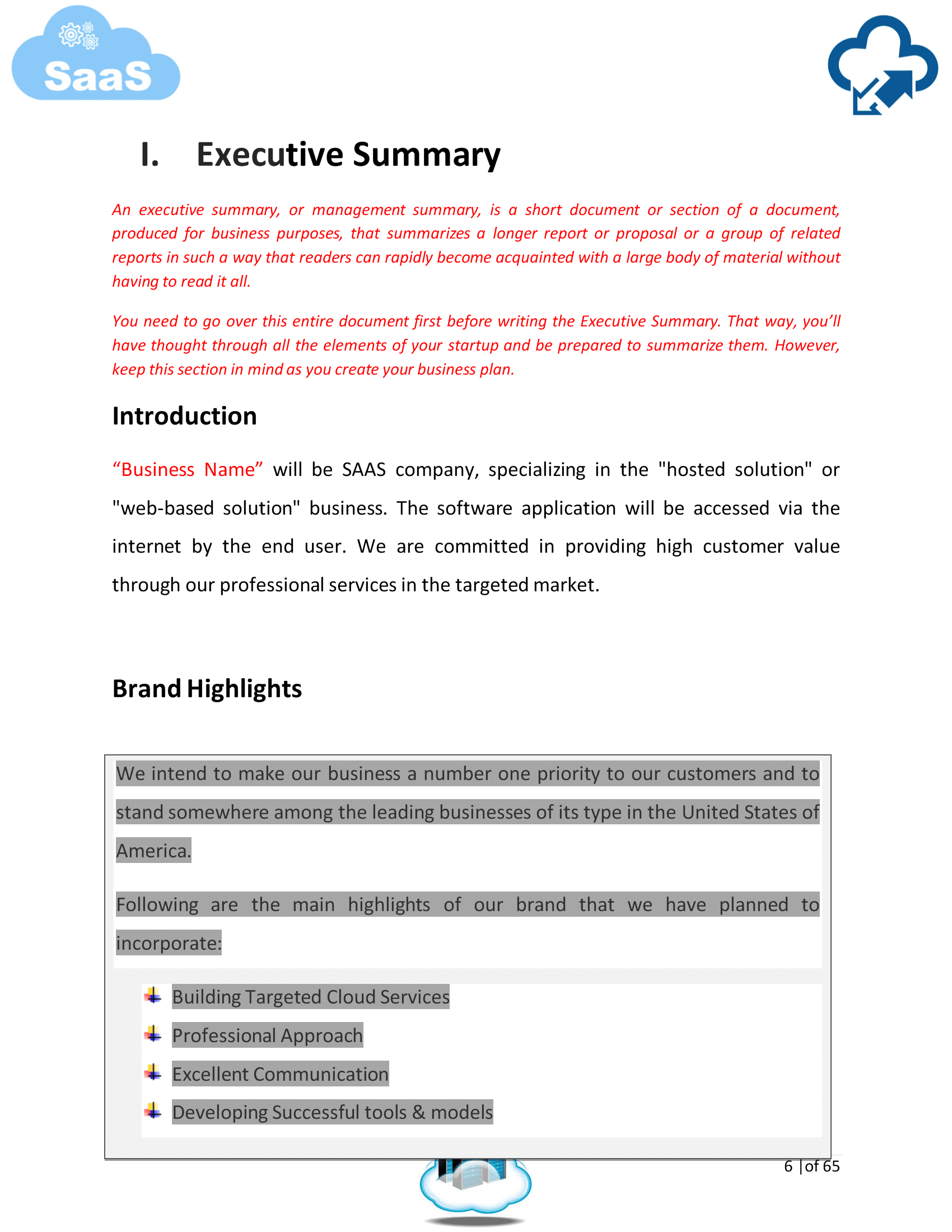 Software As A Service SaaS Business Plan Template Sample Pages - Saas business plan template