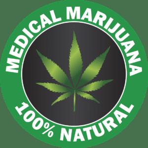 medical marijuana business plan