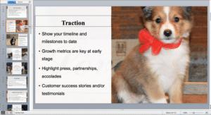dog breeding presentation