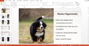 Dog Breeding Powerpoint Pitch Deck