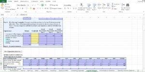 Website Design and Development Excel Worksheet