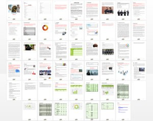 Security Guard Company Business Plan Template