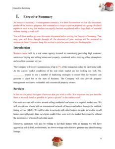 Real Estate/Realtor Company Business Plan Template