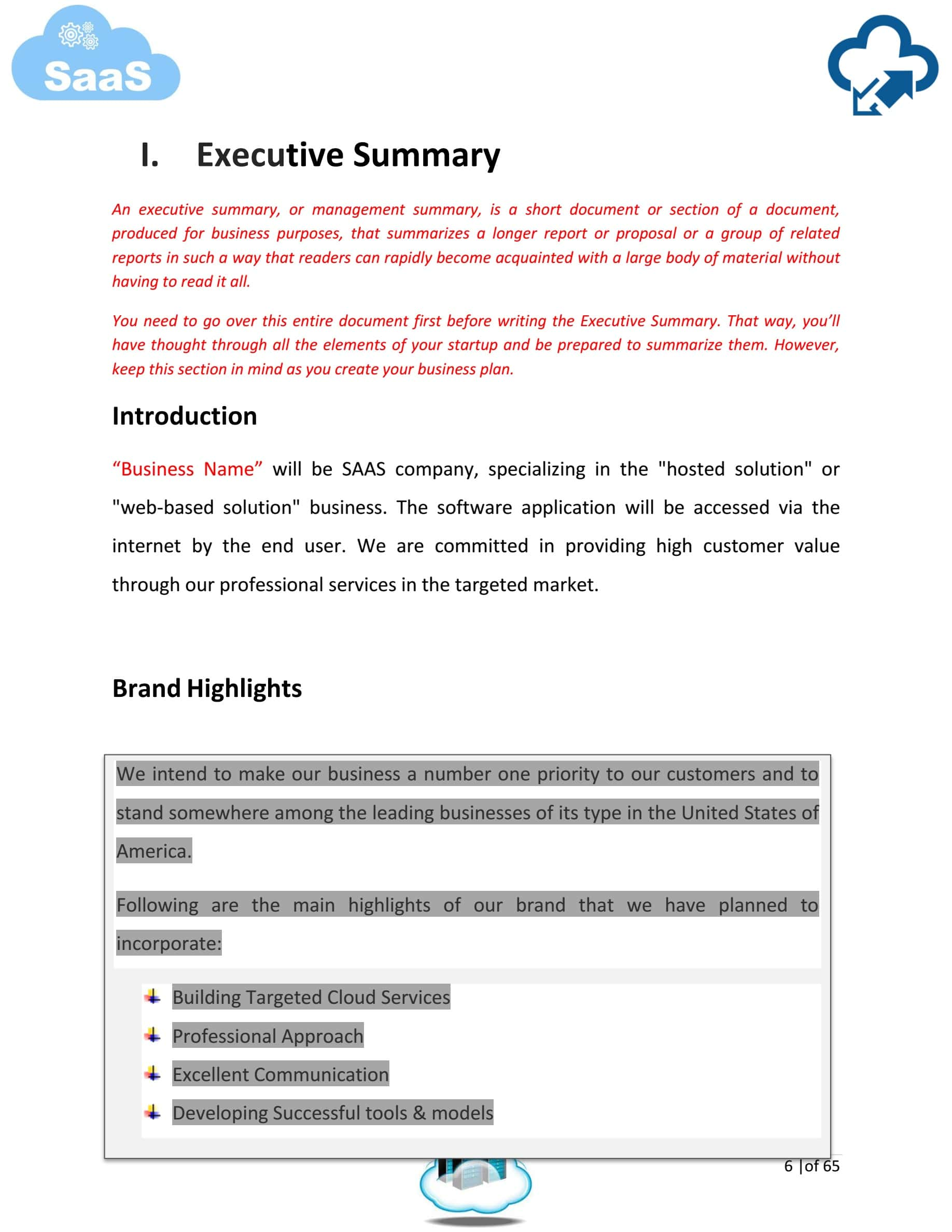 Saas Company Business Plan Template Sample Pages Black Box