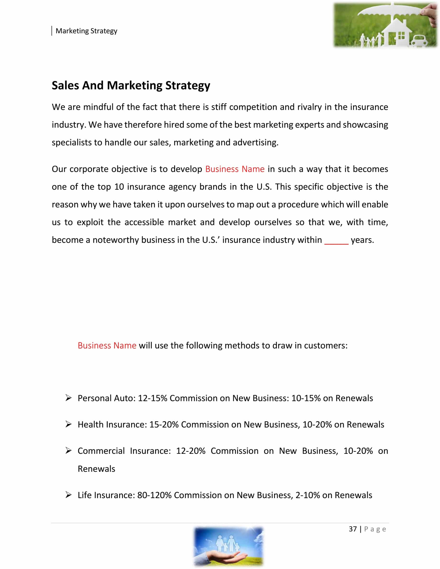 Insurance Agency Business Plan Template Sample Pages Black