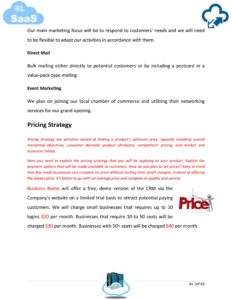 SaaS Company Business Plan Template