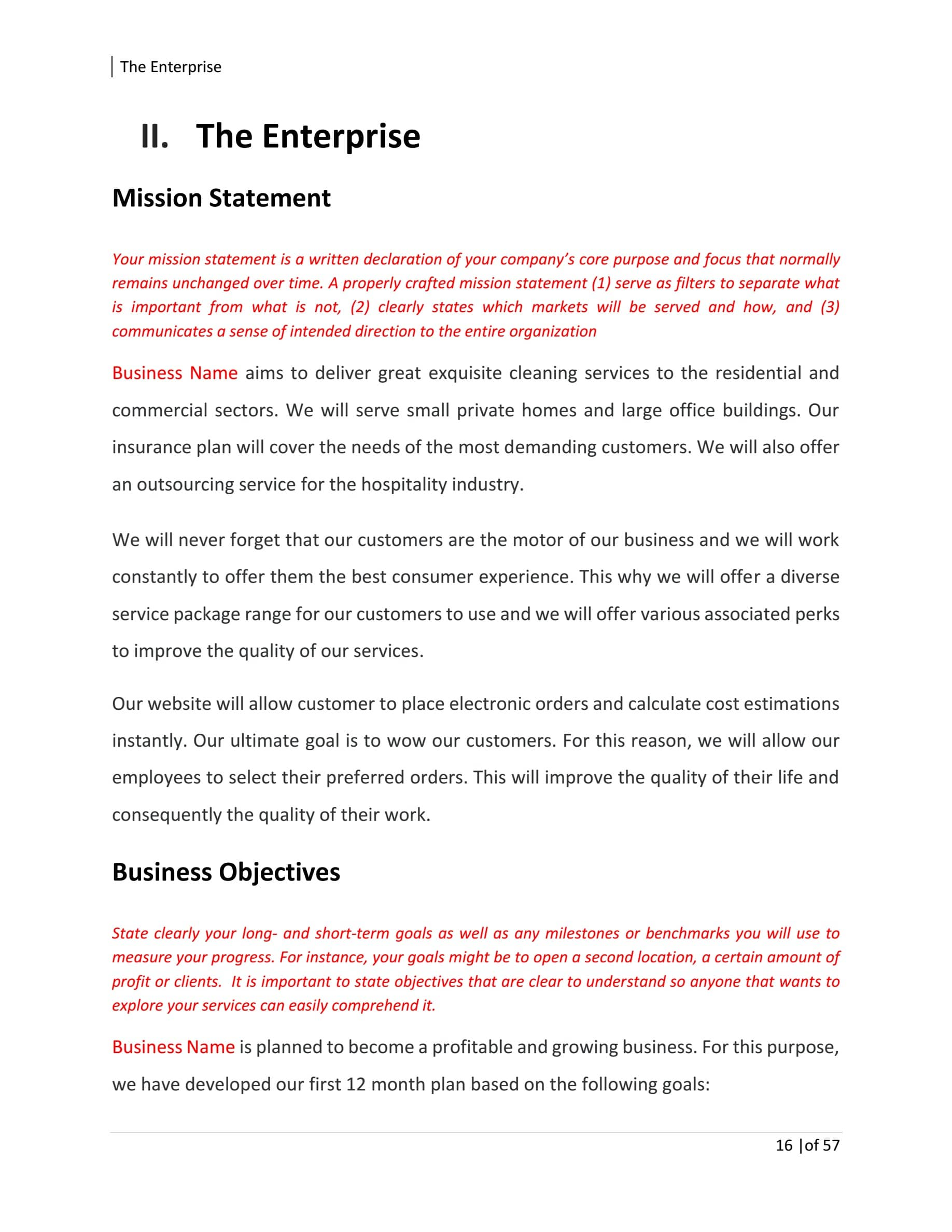 Commercial Cleaning Business Plan Template Sample Pages Black Box