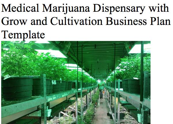 medical marijuana with grow archives black box business plans. Black Bedroom Furniture Sets. Home Design Ideas