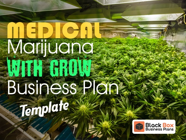 Medical marijuana dispensary with grow